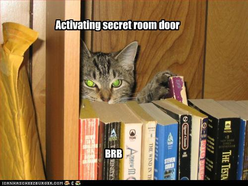funny-pictures-cat-activates-secret-door